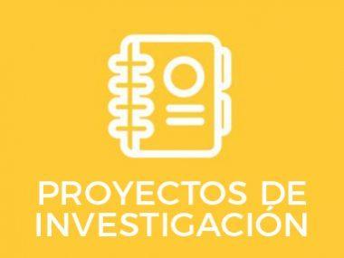 PROYECTOS-DE-INVESTIGAIÓN.ai-13-380x285_c