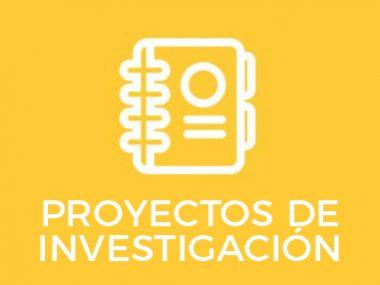 PROYECTOS DE INVESTIGAIÓN.ai-13